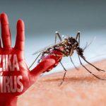 Nhiễm virus Zika có được hôn môi?