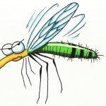 Diễn biến và xử trí bệnh sốt xuất huyết