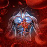 Bạn đã biết về triệu chứng rung nhĩ của tim?