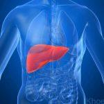 Cập nhật mọi thông tin về viêm gan E và cách phòng tránh
